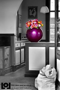 Lol From Holland A brand new concept now available in Canada and the USA LoL Cascara Ball cm Inferno Bright Colors Fuchsia high gloss High Gloss, Bright Colors, Holland, Canada, Lol, Concept, Green, Design, Home Decor