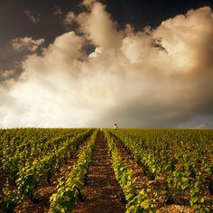 the light in Champagne. by *VaggelisFragiadakis on deviantART Champagne Region, Vineyard, Deviantart, Lighting, Outdoor, City, Landscape, Vine Yard, Outdoors