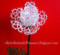 Chiacchierino della nonna: Rosa bianca