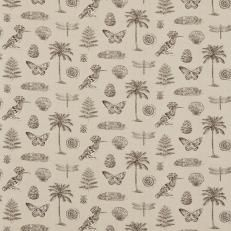 Sanderson Voyage of Discovery Cocos Fabric Collection DVOY223291