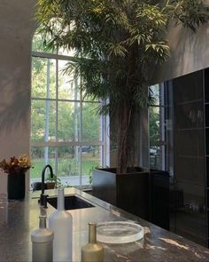 large kitchen interior // large indoor plant tree // kitchen island Dream Home Design, My Dream Home, Home Interior Design, Interior Architecture, Interior And Exterior, House Design, Kitchen Interior, Dream Apartment, Apartment Interior