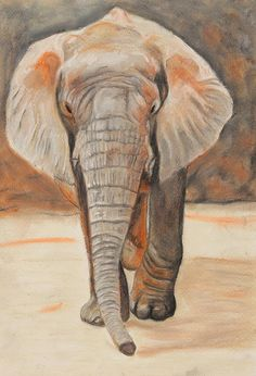 Portrait Of An Elephant by Jeanne Fischer,  Can you see him walking slowly towards you - he's curious about you
