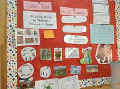 Documentation board. Process Of Change, Classroom Environment, Professional Development, Education, Board, Continuing Education, Onderwijs, Learning, Planks
