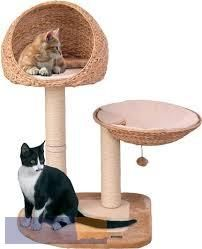 Karlie Scratching Tree With Banana Leaf Beds And Sisal Posts. Pet Furniture, Furniture Scratches, Cool Cats, Sisal, Chat Beige, Cat Scratching Tree, Cat Tree Plans, Dog Tree, Cat Accessories