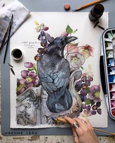 Likes, 66 Comments - Watercolor Watercolor Sketch, Watercolor Animals, Watercolor And Ink, Watercolor Illustration, Watercolour Painting, Painting & Drawing, Sketch Art, Watercolors, Illustration Botanique