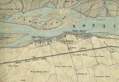 1872 Felder, Kirchen, Vintage World Maps, Cow