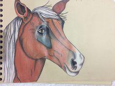 Horse drawing. #training #loveit
