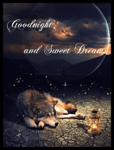 Goodnight my friend sweet dreams and God bless! Good Night Love Quotes, Good Night Prayer, Good Night Friends, Good Night Blessings, Good Night Gif, Good Night Messages, Good Night Wishes, Good Night Sweet Dreams, Good Night Image