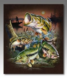Wildlife Collage Series Canvas - Largemouth Bass  For  $29.99: