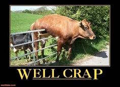 except replace it with a horse... pain in the butt to get these silly animals off of fences.