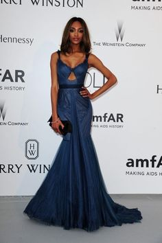 Jourdan Dunn at Cannes amfAR Gala 2015