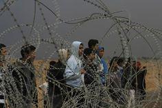 Gaza strip via unicef