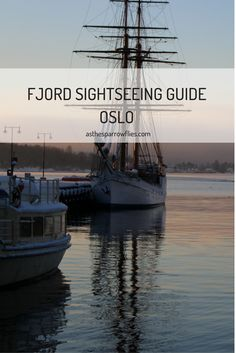 Book a fjord sightseeing tour in Oslo, and whatever the weather you'll see incredible skyscapes, still water and beautiful homes carved into the hills. http://asthesparrowflies.com/oslo-fjord-sightseeing/?utm_campaign=coschedule&utm_source=pinterest&utm_medium=Samantha%20Sparrow&utm_content=A%20Snowy%20Boat%20Ride%20In%20Oslo%20-%20Fjord%20Sightseeing