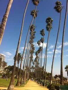 Guia de viagem a Los Angeles – O que fazer
