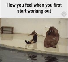 How it feels to start working out