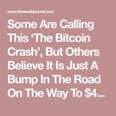 Some Are Calling This 'The Bitcoin Crash', But Others Believe It Is Just A Bump In The Road On The Way To $40,000 | The Sleuth Journal