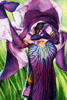 Florals by Soon Warren - love her incredible paintings. They are so luminous and rich