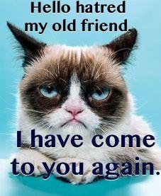 #grumpy cat, #humor, #cats