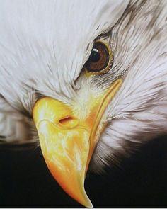paintcustomart Eagle Art Airbrush..Great work. Airbrush Designs, Airbrush Art, Eagle Images, Eagle Drawing, Eagle Painting, Eagle Art, Custom Airbrushing, Eagle Design, Interactive Art