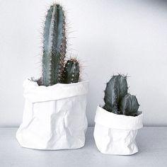 Uashmama washable paper plant covers and cactus