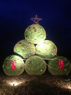 Our hay bale Christmas tree this year!