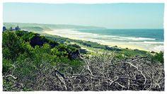 "Tergniet towards Groot-Brak (Suiderkruis beach) - ""nostalgia"" fixie I really like this effect! OLYMPUS E-PM1 jpg."