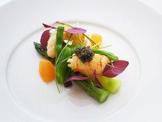 Q.E.D.クラブのお料理 | レストランウェディングなら 他にはない情報多数掲載 SWEET W TOKYO WEDDING Lobster Salad, Michelin Star Food, Modern Food, Cooking Recipes, Healthy Recipes, Weird Food, Molecular Gastronomy, Antipasto, Restaurant Recipes
