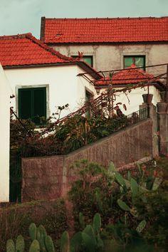 Old garden on Madeira