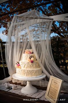 Buttercream Cake - Rustic Farm Country Wedding - Outdoor Cake Stand - Fall - Dirty Icing - Wedding Outside - Quilt Wedding - Rustic Chic Wedding Cake Ideas - Knoxville TN Florist - Burlap and Lace Wedding Ideas - Wedding Cake Pictures - Inspiration - Theme - Blush - Peach - Ivory - Arbor Ideas - Pergola for Cake - www.lisafosterdesign.com #laceweddingcakes #weddingideas #countryweddingcakes #rusticweddingcakes
