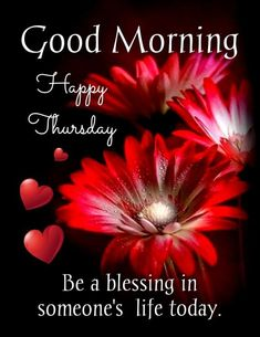 Happy Thursday Pictures, Good Morning Happy Thursday, Happy Thursday Quotes, Thursday Images, Thursday Humor, Good Morning Good Night, Good Morning Images, Thursday Greetings, Beautiful Morning Messages