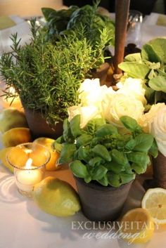 Fragrant rose, basil and lemons