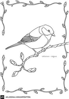 pikkulintuvärityskirja Teaching Aids, Sketch Painting, Kindergarten Teachers, Nature Crafts, Nature Animals, Drawing Techniques, Science And Nature, Adult Coloring Pages, Art Lessons