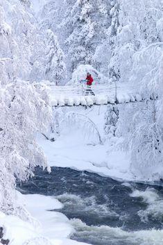 Bridge over Myllykoski falls in Oulanka National Park / Photo: Kimmo Salminen
