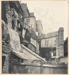 At rear of Gloucester-street from Views taken during Cleansing Operations, Quarantine Area, Sydney, Vol. V / under the supervision of . The Rocks Sydney, Gloucester Street, New York Buildings, Botany Bay, Historical Images, Sydney Australia, City Streets, Vintage Photography, Old Photos