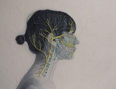 Anatomical Embroideries Series – Fubiz Media