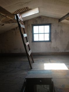 Attic space slated for remodel will include dormer and skylights