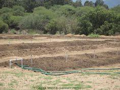 Camas de Lombricultura