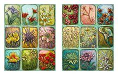 Wild Flowers of Israel Fine Art Print