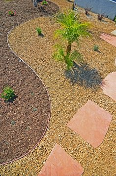 Front Yard Xeriscape Ideas | Xeriscape ideas for Michelle's front yard / Elegant curves draw the ...