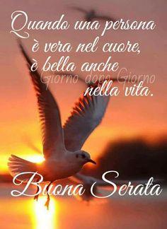 Buona serata persona vera e bella nel cuore Peace Quotes, Life Quotes, Italian Life, Good Night, Persona, Happy, Animals, Link, Creative
