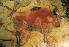 Bison, detail of a painted ceiling in the Altamira cave, Santander, Spain, ca. 12,000-11,000 BC Each bison approx. 5' long - Google Search