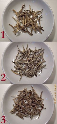 The best type of white tea is Silver Needle. It is a name derived from the basic appearance of the dry tea. The shape is like a needle. And the needles are silvery in color from the fine strands (c...