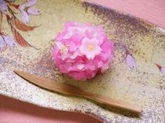 春爛漫 Haru ranman - Spring in full bloom