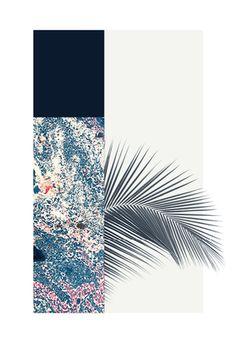 Mon ex Katherine m'a offert ce poste d'Alex Proba, tout est là en fait : le bleu marin très profond, l'espèce de marbré coloré, le végétal, le graphique