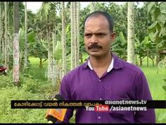 Filing of paddy fields in Kozhikode | Chuttuvattom News - YouTube