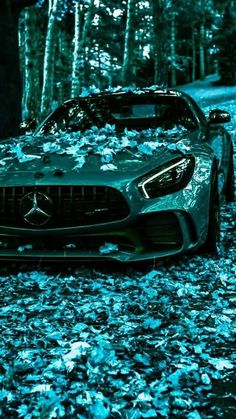 Luxury Sports Cars, Top Luxury Cars, Exotic Sports Cars, Sport Cars, Exotic Cars, Mercedes Auto, Lamborghini Cars, Bugatti, Lamborghini Gallardo