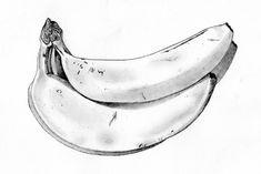 Bananas pencil drawing   Flickr - Photo Sharing!