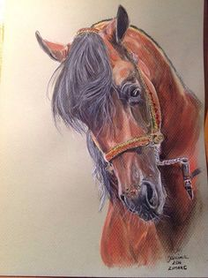 Zimark Chalk pastel on Canson paper, 21x30 cm Photo by Boguslaw Jedrych