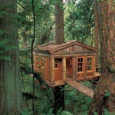 Temple of the Blue Moon. This charming treetop cottage is designed by Pete Nelson and built by Treehouse Point in Issaquah, Washington. Nelson created this sustainable tree house as an educational getaway that provides visitors to connect with nature. Cabin In The Woods, Cool Tree Houses, Amazing Houses, Tree House Designs, In The Tree, Big Tree, Play Houses, Dream Houses, Cubby Houses