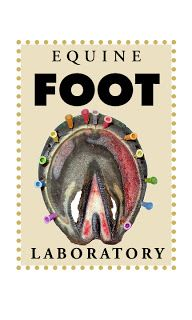"""Fran Jurga`s Hoof Blog: News from Hoofcare + Lameness: Research: Clayton and Bowker's """"Effects of Barefoot Trimming on Hoof Morphology"""" Focu..."""
